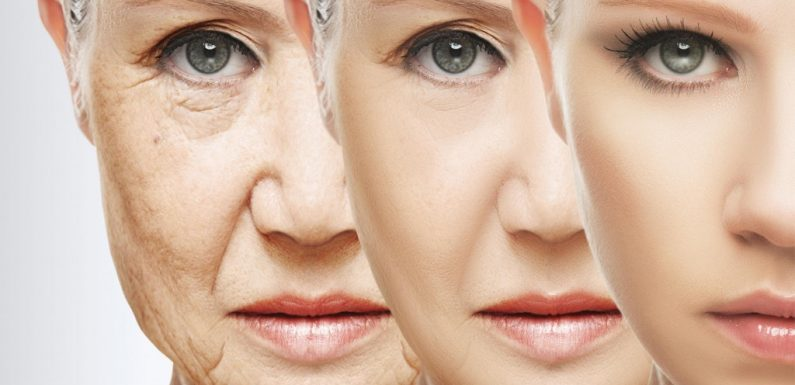 How to pick the very best Anti-aging Skincare