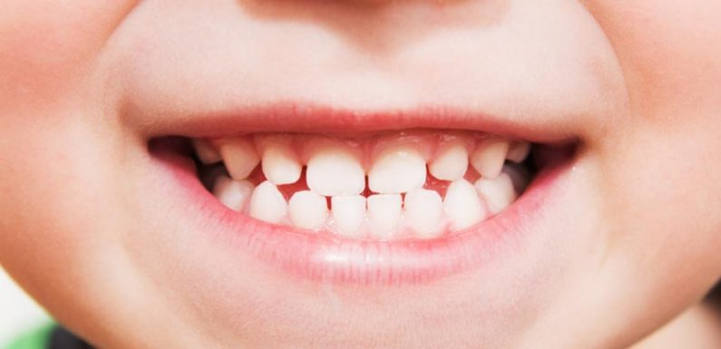 A Handy Guide to Dental Health and Hygiene for Young Kids