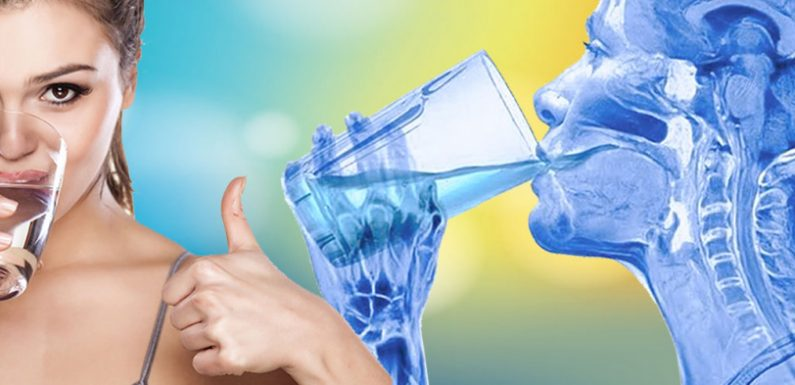 Why Invest in A Water Ionizer?